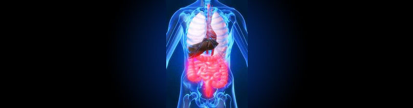Beat constipation: Treat spastic bowel conditions